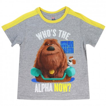 Universal Secret Life Of Pets Who's The Alpha Now Grey Toddler Boys Shirt at Space City Kids Toddler Clothes