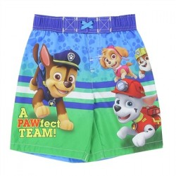 Nick Jr Paw Patrol And Friends Toddler Boys Swim Trunks At Space City Kids Clothing Store